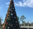 Gonzales Christmas Tree